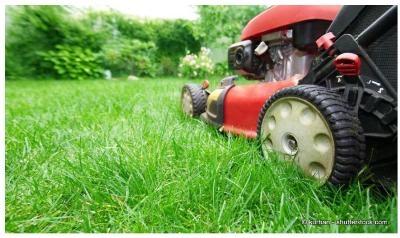 Rasenmäher und Taschengeld aufbessern